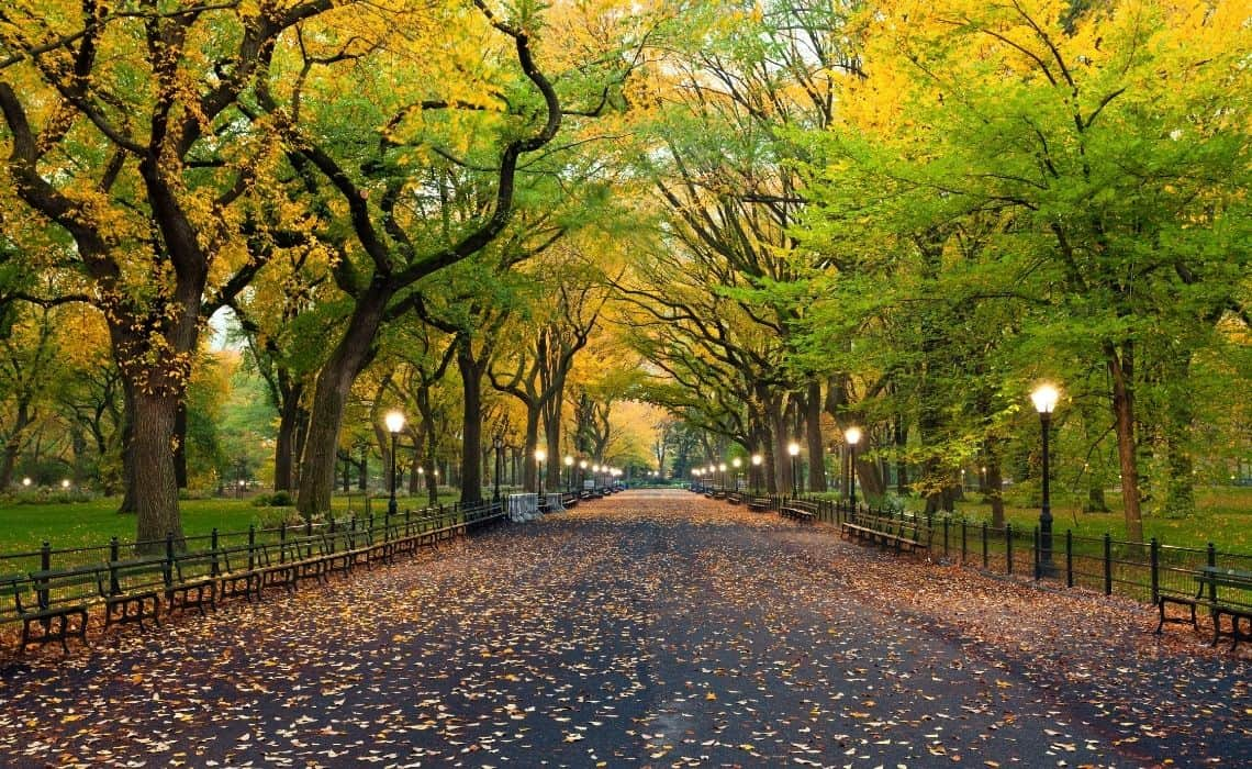New York City self guided walking tours Central Park