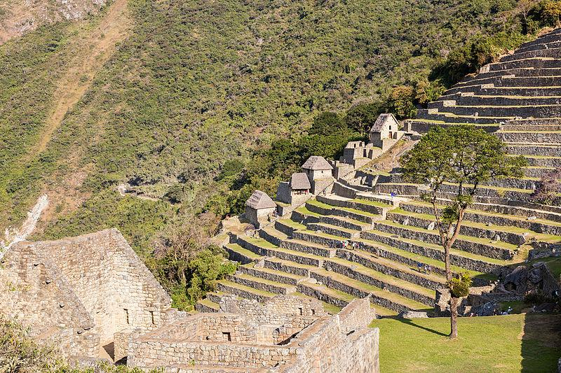 machu_picchu_minitour_TP2_2nd_A masterpiece of human accomplishment_Inca stepped terraces_Poco a poco